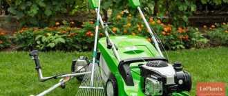 Полезный инструмент для ухода за газоном своими руками