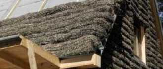 Водорослевый утеплитель — уникальный материал на страже тепла дома