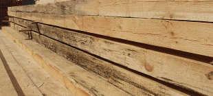 Синева на древесине — от чего возникает, чем грозит и как от него избавиться